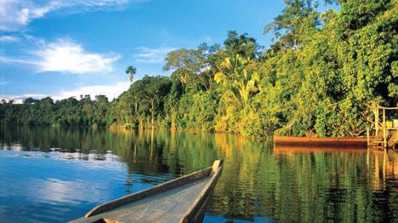 River Jungle Puerto maldonado Peru