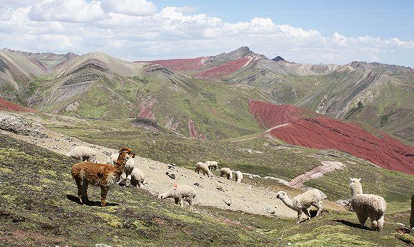 Montaña Arcoirir Perú